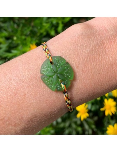 Green sand dollar with cord bracelet