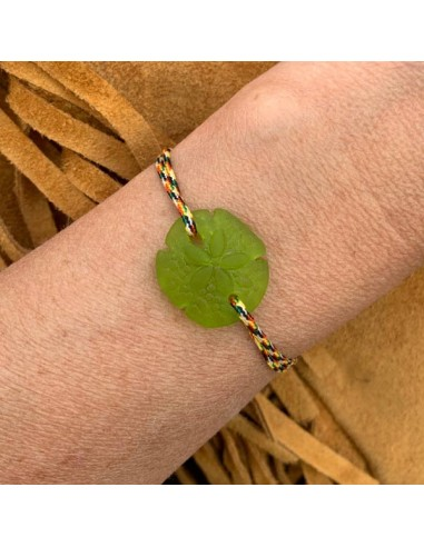 Light green sand dollar with cord...