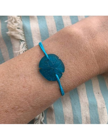 Turquoise sand dollar with cord bracelet