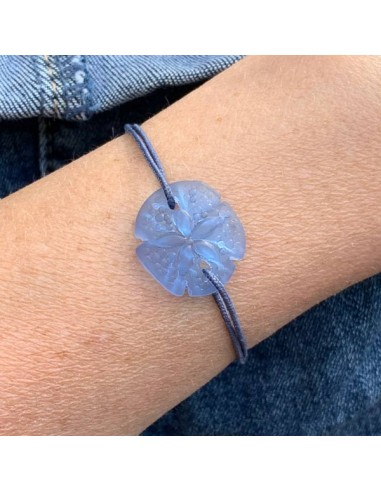 Light blue sand dollar with cord...